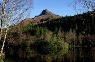 Glencoe Local Area10